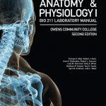 627-0_Owens-Anatomy211-Gosses